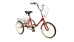 Fold and Go Single Speed Folding Trike - TBFGSSRD